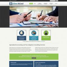 Accounting Negligence website image